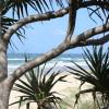 Explore Noosa's eastern beaches
