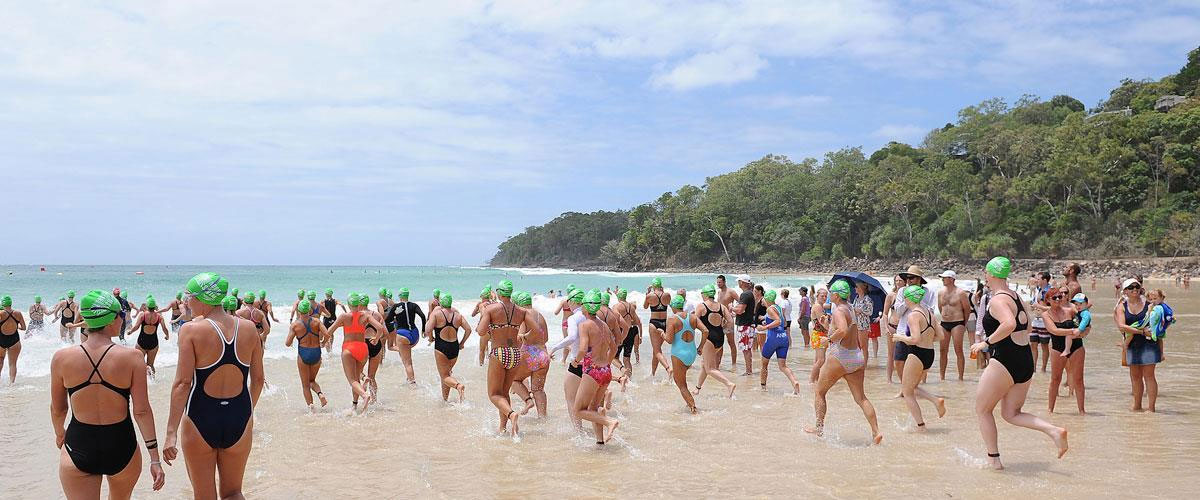 The Noosa Summer Swim