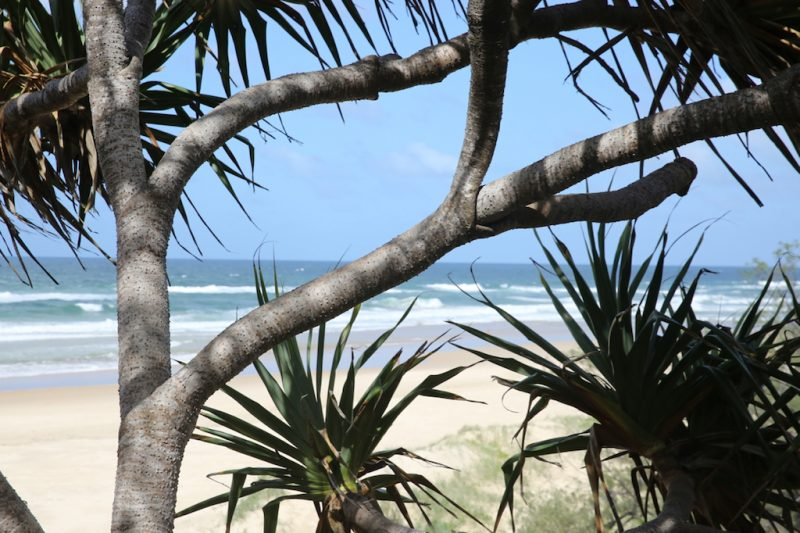 Explore Noosa's eastern beaches with Sunshine Beach Accommodation