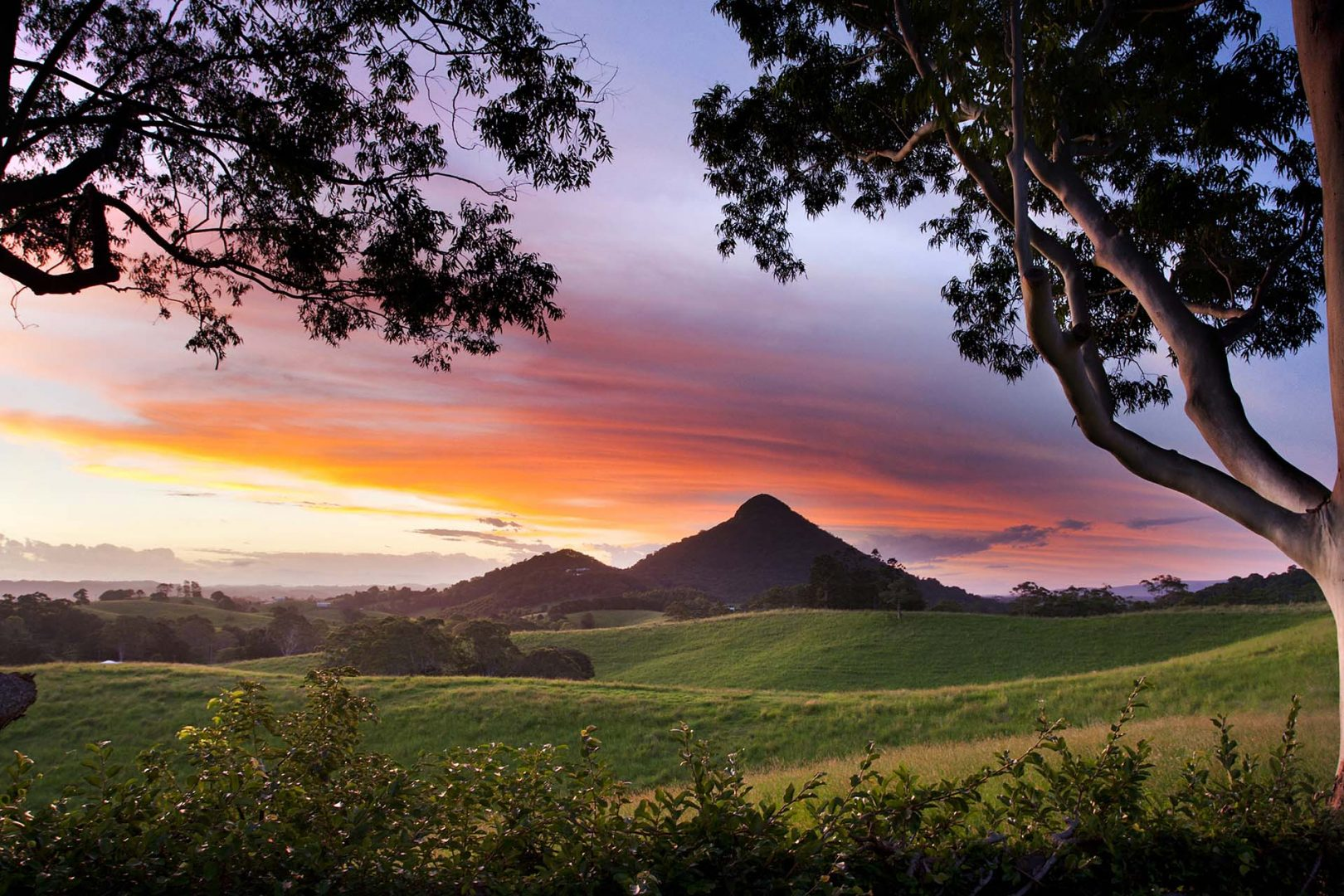 Things to do in Noosa for nature lovers