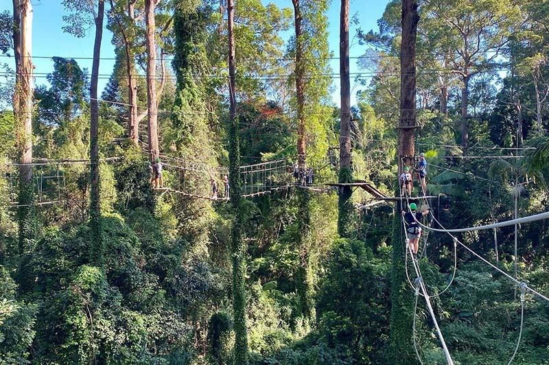 The great outdoors – Let the TreeTop Challenge begin!