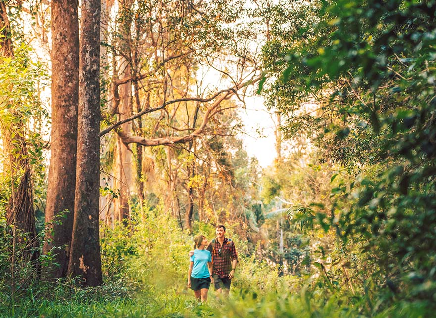 Sunshine Coast Walks - Noosa Trail Network